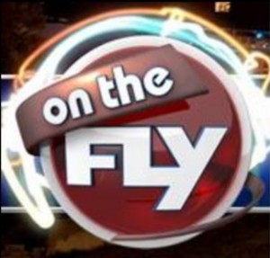Logo - On The Fly