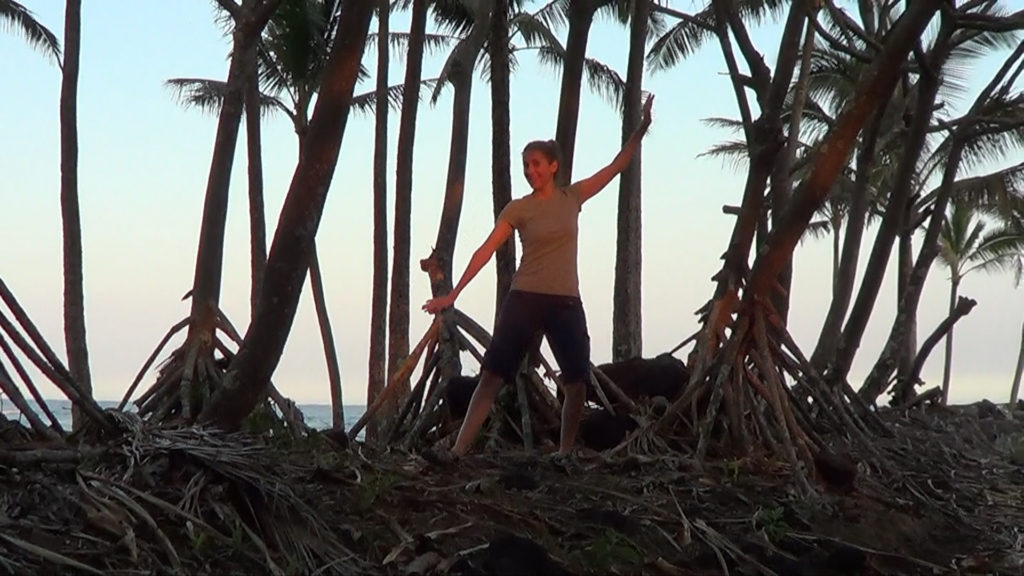 Hawaii Dance 017 - Tree Roots near Ahalanui Warm Spring
