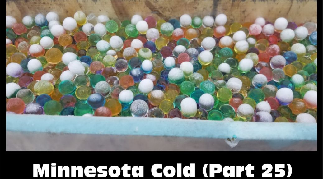 minnesotacold – Minnesota Cold – Cold Weather Experiments